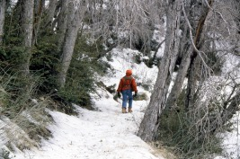 2.Tacho hiking in snow