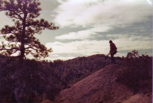 Bowhunt, Angeles forest