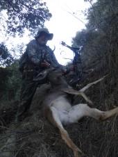 53.Jarv's buck