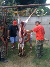 Chaug, Me, cleaning Tacho's buck at Tio's