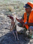75. Vandy Coyote Killer