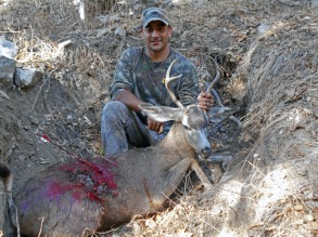 Tacho with heavy buck, Altadena
