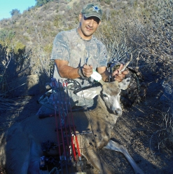 Tacho arrowed buck, Angeles Forest