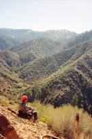 Angeles Forest