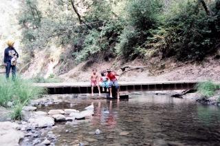 Camping Pops Nene Tacho