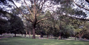 Civil War Cemetery, TN