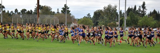 XC League Finals 2017