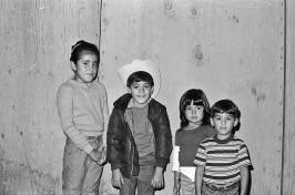 Sonia, Tacho, Maka, Pops