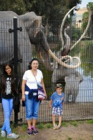MIranda, Mama, Cruz at La Brea Tar Pits