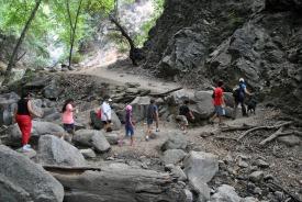 Family hiking at Monrovia Canyon Falls