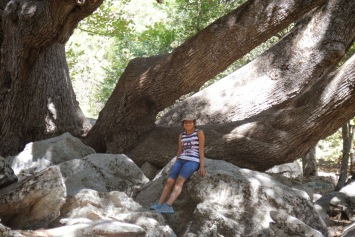 Palomar Mtn Miranda 2012