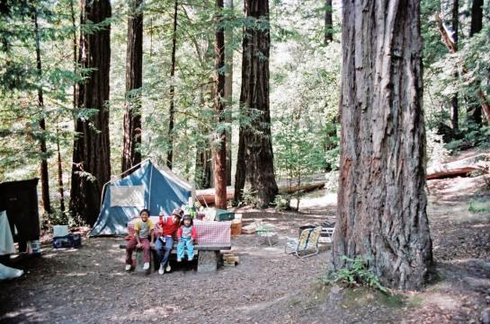 Sequoia, Pops, Tacho, Nene