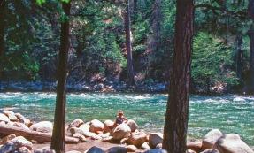 Tacho at Sequoia River
