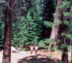 Tacho, Claudia Chavez, Sequoia