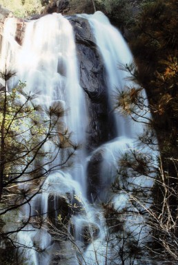 Sequoia Waterfall 1980