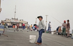 Tacho pier fishing