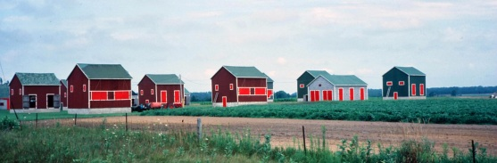 Tobacco houses, Canada